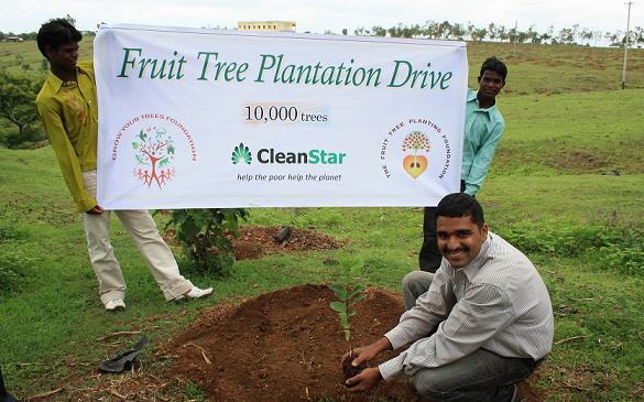 Essay on tree plantation programme - Essay on Tree Plantation