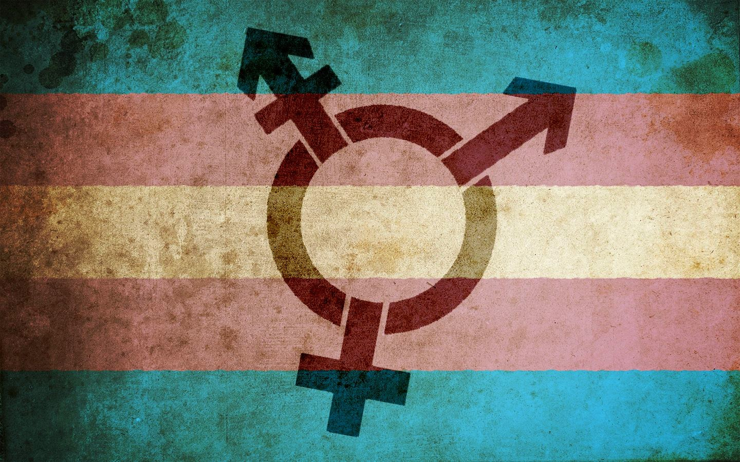 Harry Styles Fall Wallpaper Be A Trans Ally On Transgender Day Of Remembrance The
