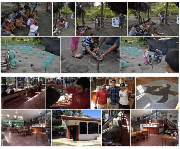 Reserva Playa Tortuga Collage