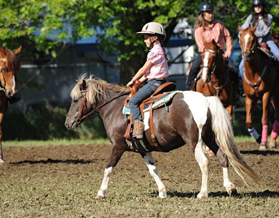 festival-cheval