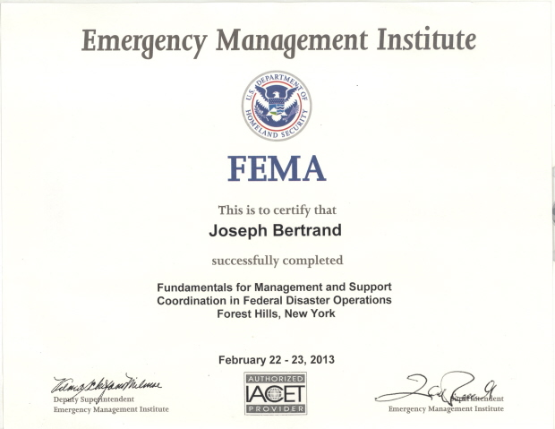 AIDA IT CONSULTANT  IT PROJECT MANAGEMENT - emergency management consultant sample resume