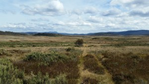 20150401_140702 (Wednesday the 1st of April – Bradley's Hut to Providence Portal)