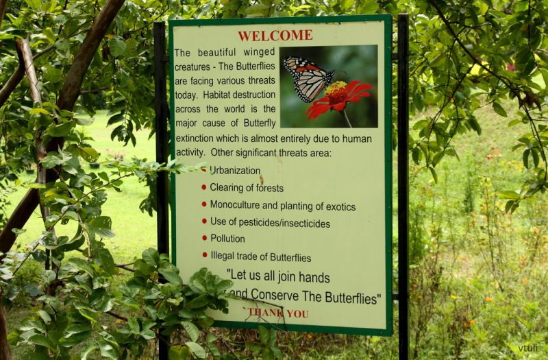 The Welcome Board - Butterfly Park Chandigarh
