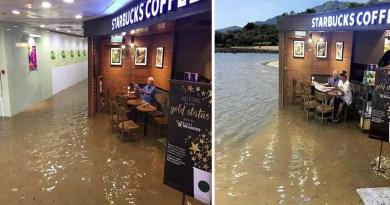 Старика, сидящего в Starbucks во время потопа, решили немного подфотошопить.