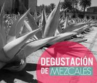 Degustacin de Mezcal con Tapas en La Contra Guadalajara