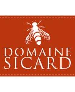 avatar-domaine-sicard
