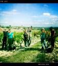 la-vignereuse-1