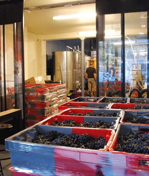 les-vignerons-parisiens-2