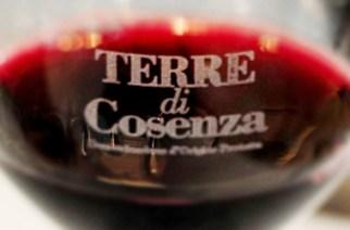 Terre di Cosenza - Dop Bruzia al Vinitaly 2013 ospita il Ministro Corrado Clini
