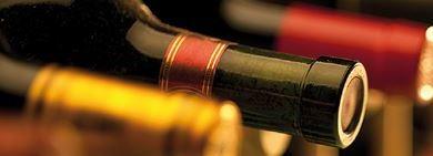 fernando-castro-vinos
