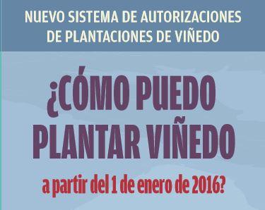 como-plantar-vinedo-2016