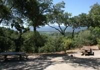 picnic grove