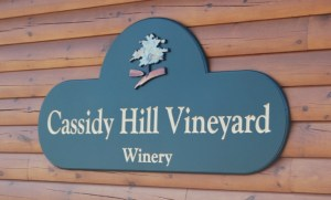 Cassidy Hill Vineyard / Photo: Marguerite Barrett