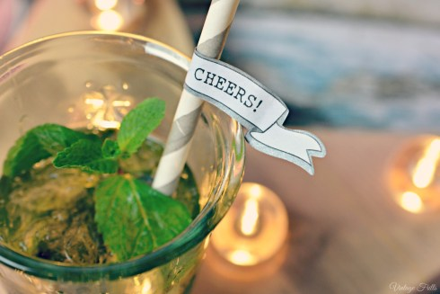 Taste Cocktails Cheers