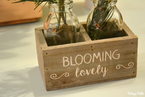 noths-blooming-lovely