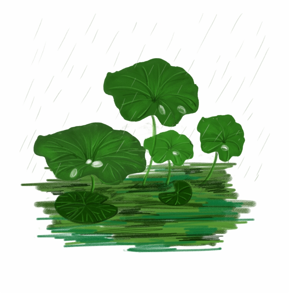 Lotus Leaf Vector Realistic Plant Png And Psd Illustration Transparent Png Download 1446930 Vippng