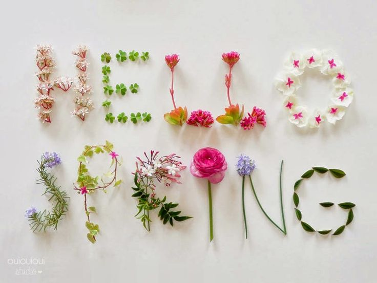 5 Common Illnesses this Spring to Watch-out for - Virily - photo of spring