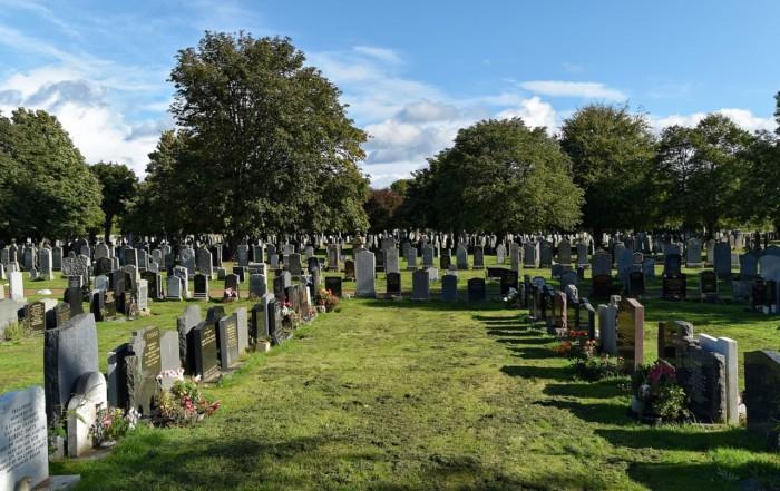 Cemetery Manager Sample Resume kicksneakers
