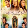 La rosa de Guadalupe es la mejor serie del mundo