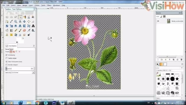Create Transparent Background for Image in GIMP - VisiHow - how to make a picture transparent