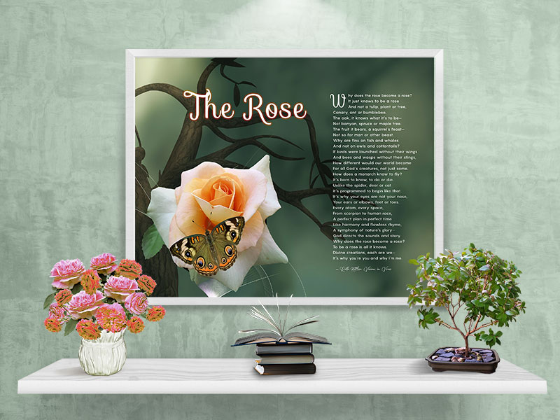 The Rose\