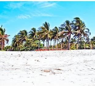 playas el salvador