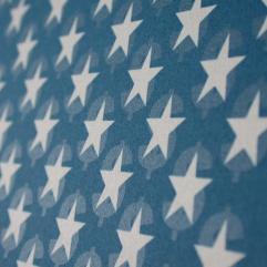 Steve Lambert U.S. Flag photo