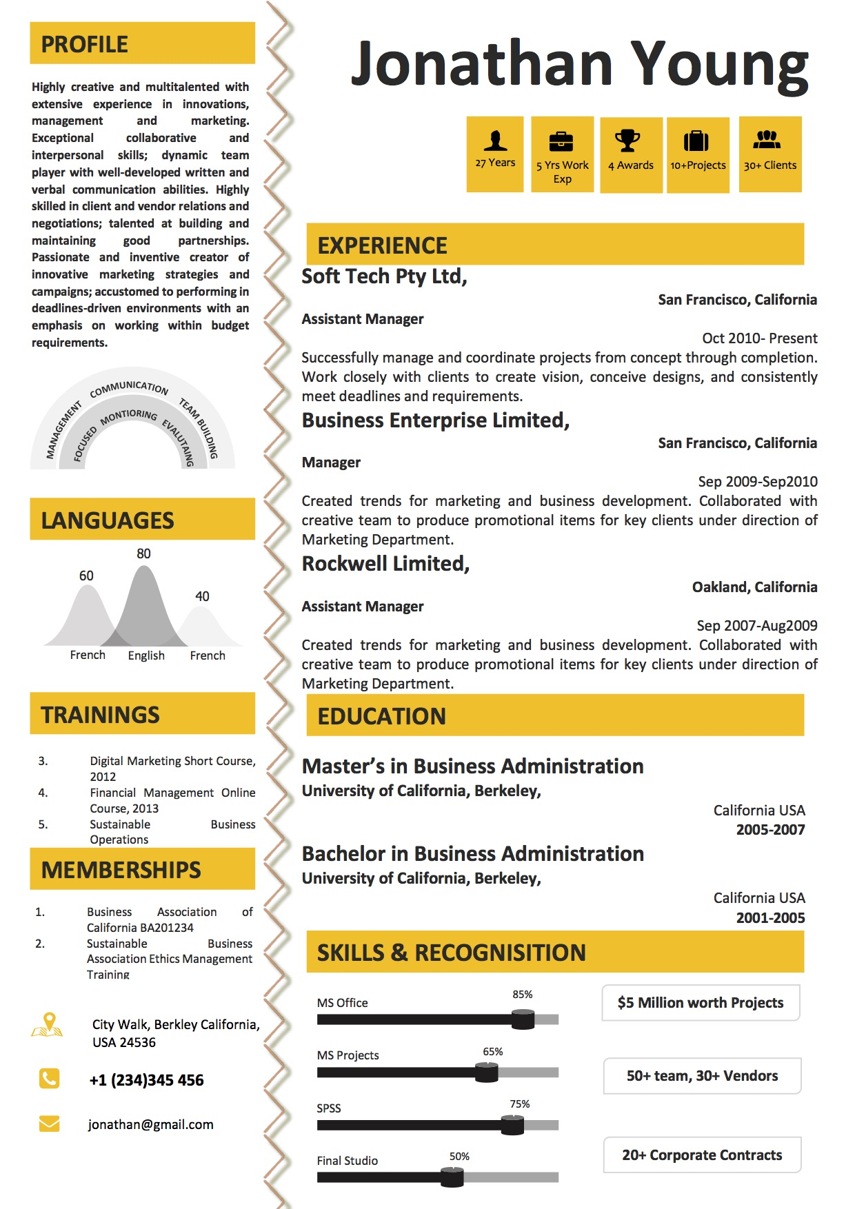 infographic resume template online