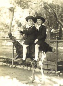 Kumpulan Kata Benda Yg Berhubungan Dengan Hukum Gudang Makalah Anne Dan Theo Kemarin Di California 1915