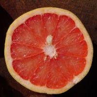 Houdt u van grapefruit?