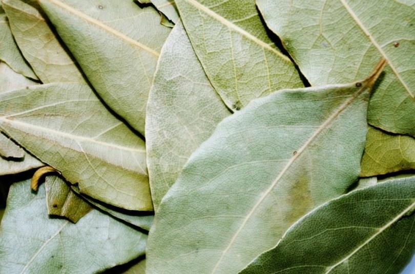 bay-leaf-1049543_960_720