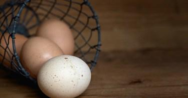 egg-1385315_960_720