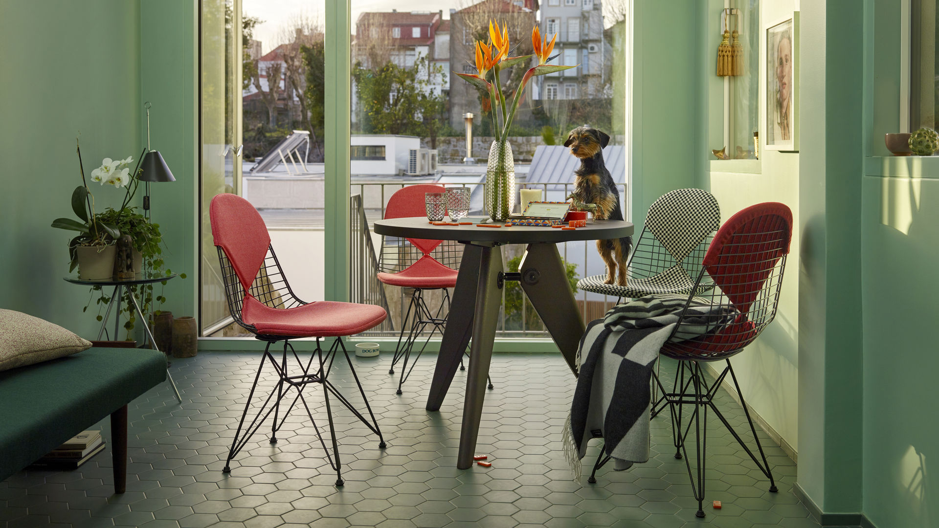 Masters Kartell Vitra | Wire Chair Dkr