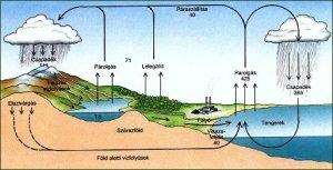 vizkorforg