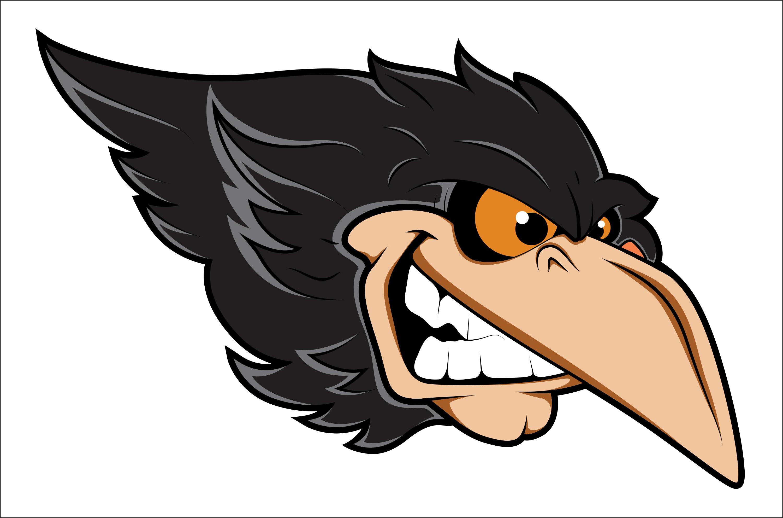 angry-crow_m1XM0b_L