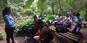 Cada actividad de Puerto Rico al Sur tiene un enfoque eco-terapéutico.