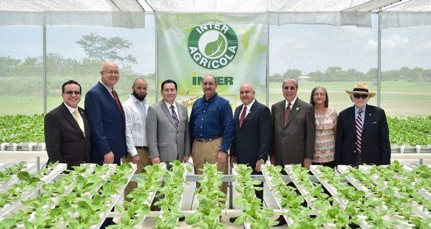 A través de la iniciativa Inter Agrícola en Guayama, la Universidad Interamericana de Puerto Rico promoverá la producción y venta de hortalizas y frutos menores.