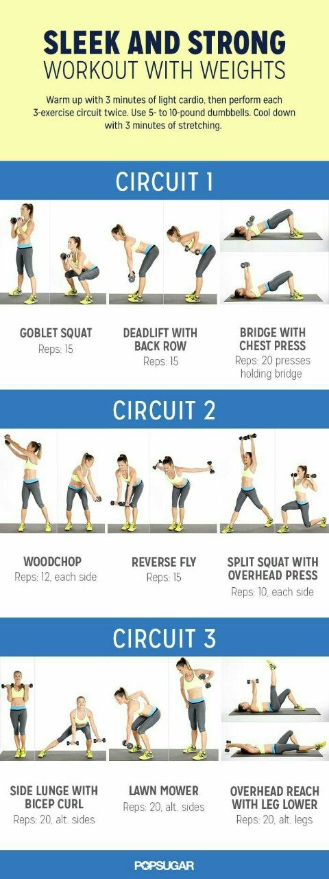 Best 25+ Body weight circuit ideas on Pinterest Body weight - powder burn rate chart
