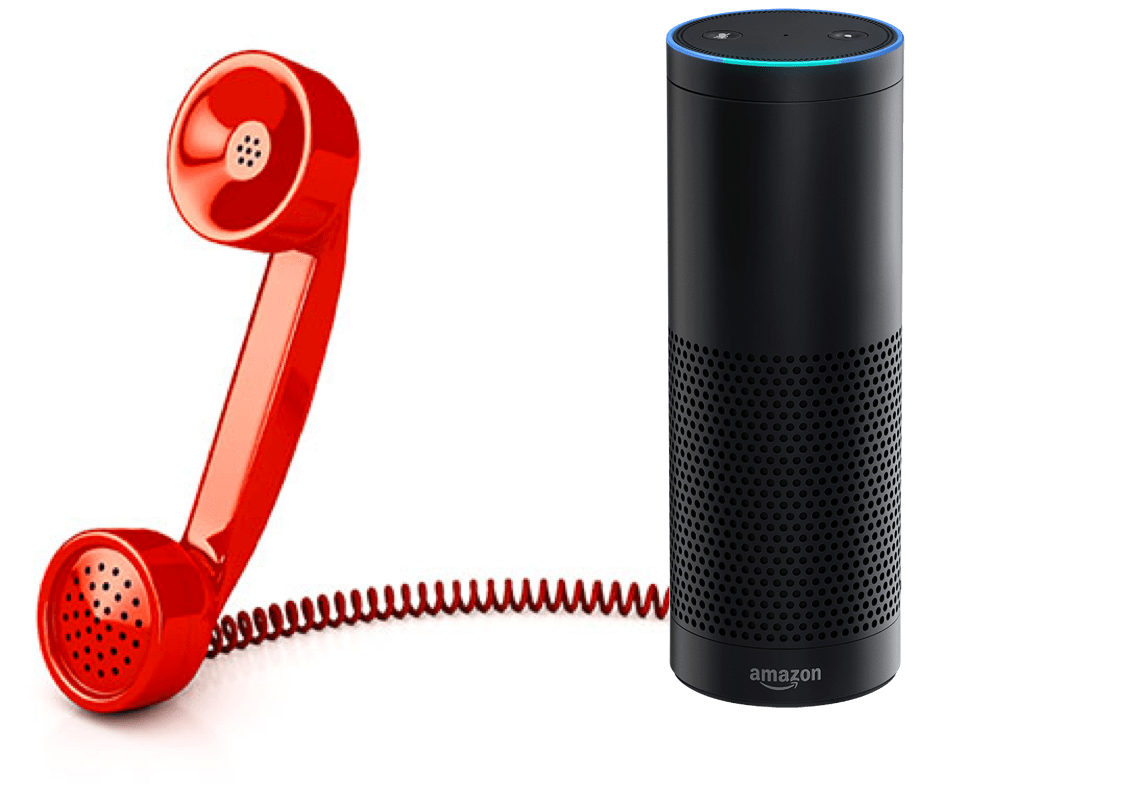 Echo Voice Echo With Phone Service Voicebot