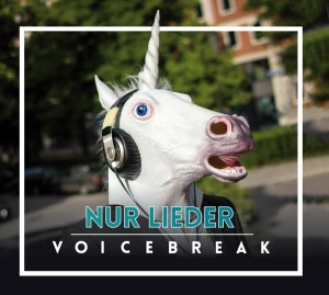 voicebreak_cover_nur_lieder_klein