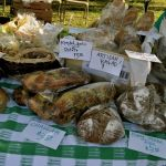 """""""Making Dough with Artisan Breads"""" Farmer's Market ebook now available!"""