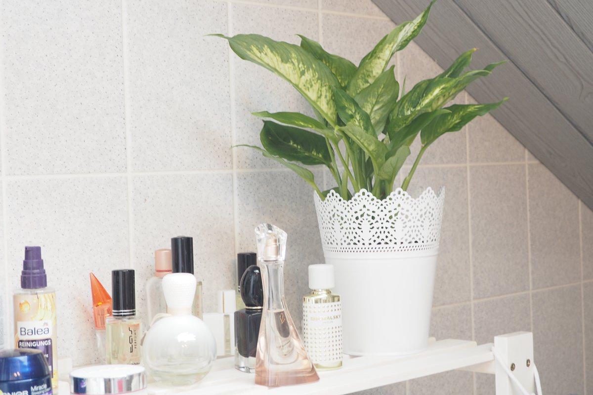 Ideale Pflanzen Fürs Bad | Dachterrasse Bodenbelag Dachterrasse ...