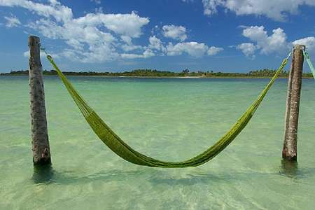 inviting hammock waiting for you on a warmth crystalline caribbe