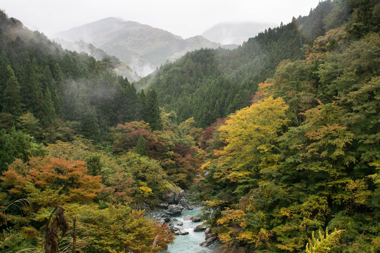 Dans les vall es oubli es du japon iya la recul e - Maison de vallee au japon par hiroshi sambuichi ...