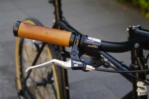 surly_crosscheck_soma[1]