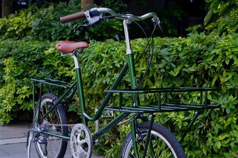 ebs_leaflong_green[6]