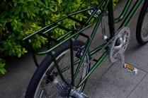ebs_leaflong_green[9]