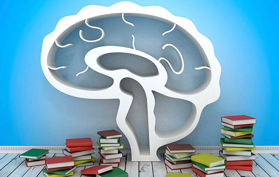 your-brain-on-books