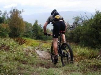A mountain biker rides on the Kingdom Trails network. Courtesy photo