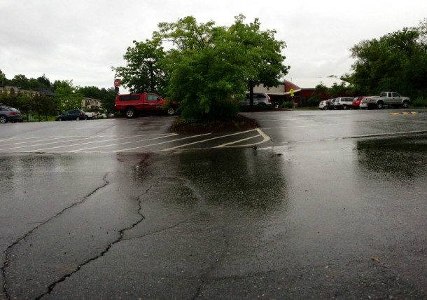 A vegetative strip divides the parking lot at the Hunger Mountain Coop in Montpelier. Photo by John Herrick/VTDigger